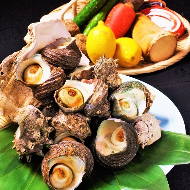 """Weekday-special event """"Guess the weight of the turban shell (Japanese Sea Snail)"""" takes place!"""